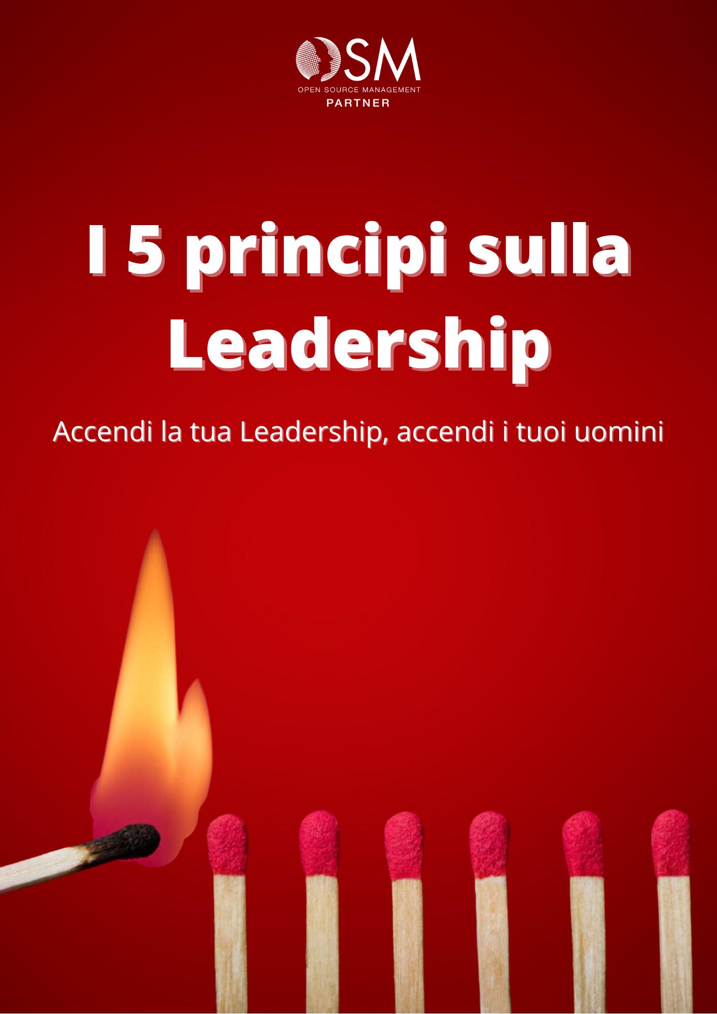 Guida leadership